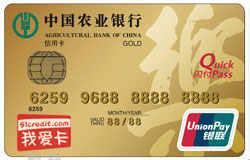 农行乐卡(带电子现金金卡)